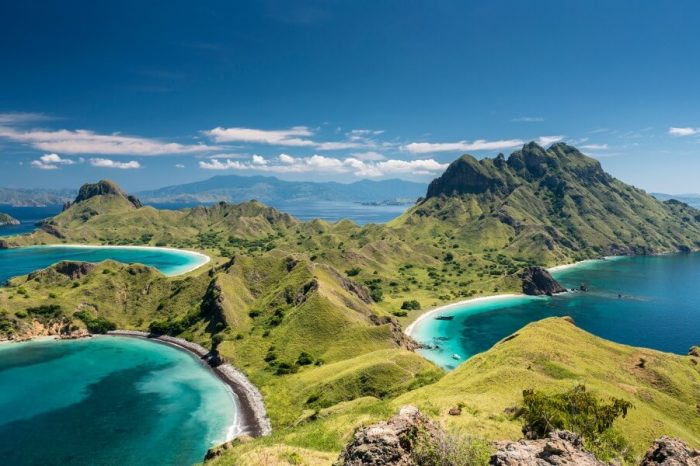 A WALK ON THE WILD SIDE: FLORES AND KOMODO