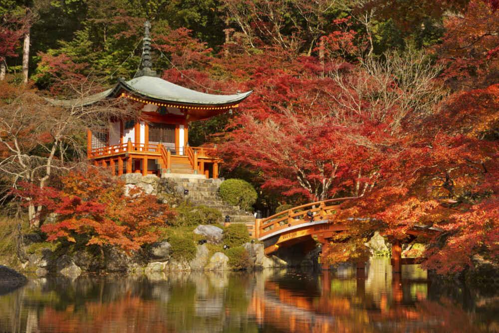 Autumn colours at Daigo ji Temple in Kyoto Japan