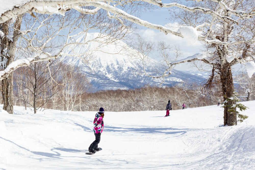 Snowboarding through Trees in Niseko Japan1000x600