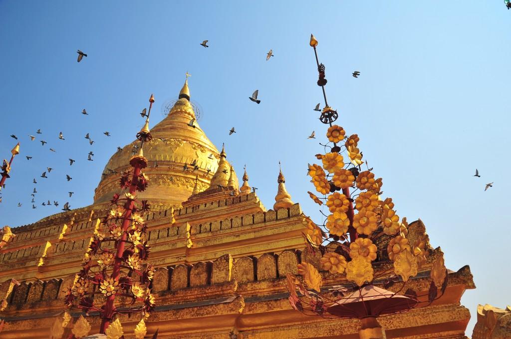 Myanmar Visa: Shwedagon temple in Yangon, Myanmar