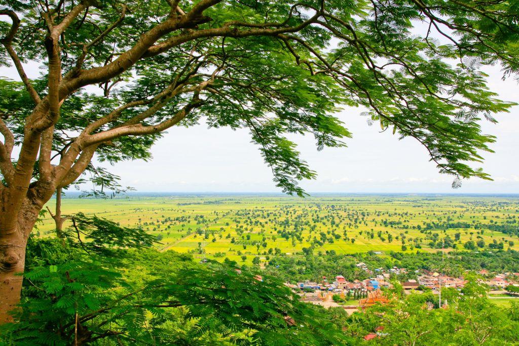 Cambodia-Battambang-Nature