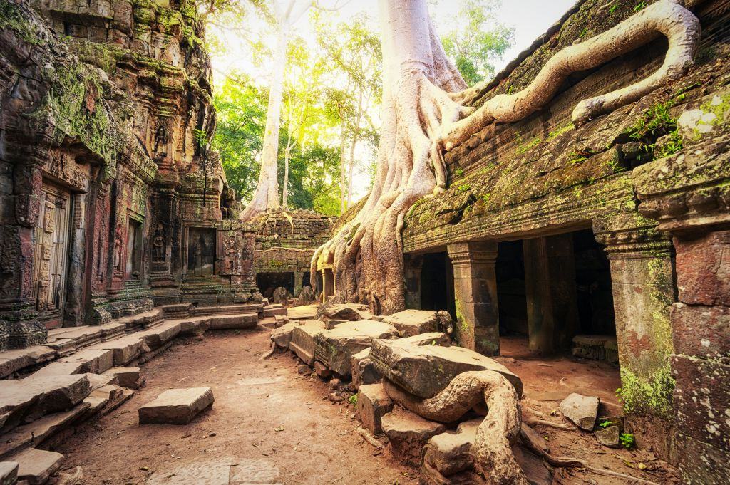 Travel experiences in Asia: Siem Reap Ta Prohm temple