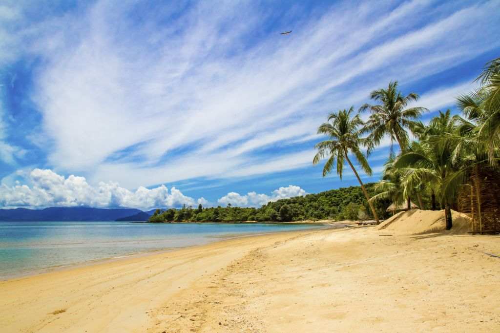 secret beach in Thailand: Koh Phayam, Ranong - palm trees and blue sea