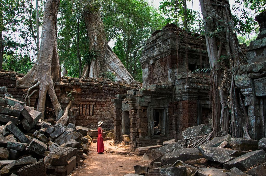 Facts about Cambodai - Dinosaurs in Ta Prohm temple