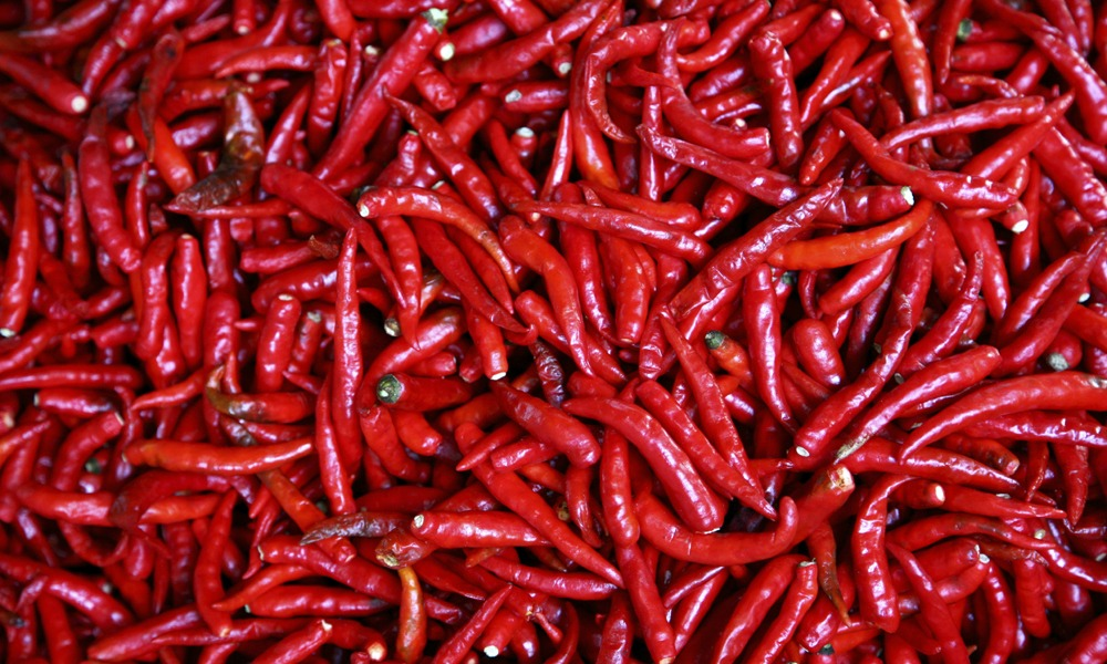 Isaan culinary tour: red chilies