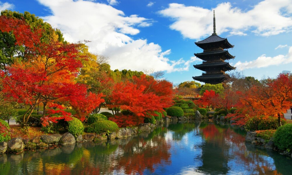 honeymoon activities in Japan: Honshu garden in Kyoto