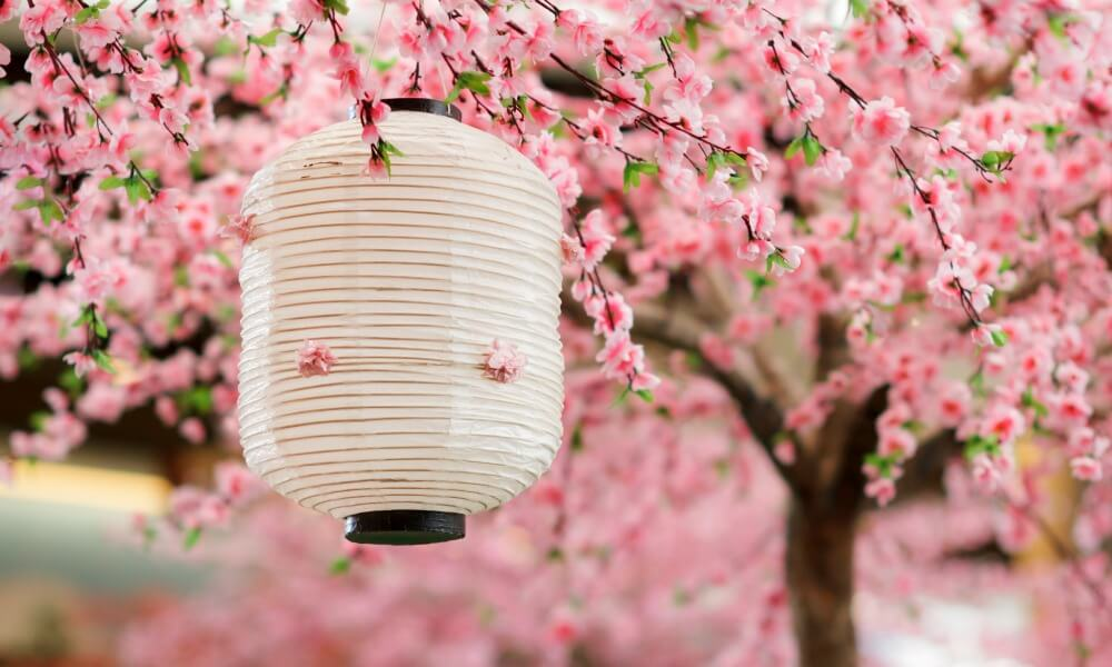 c5d1a4f704280 Cherry Blossom in Japan: 12 Useful Questions & Answers You Need