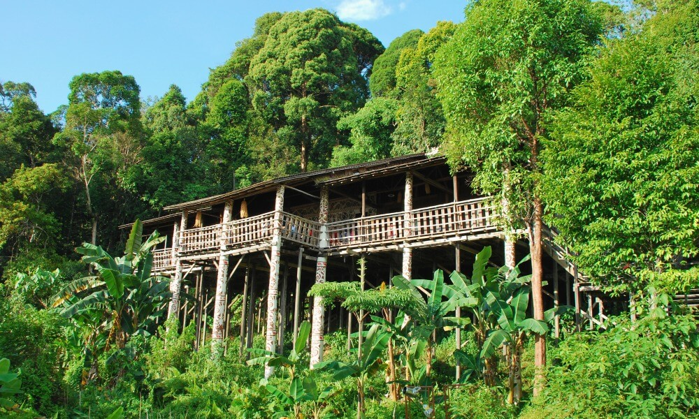 Borneo-Wildlife-Tour-Pitas-lake