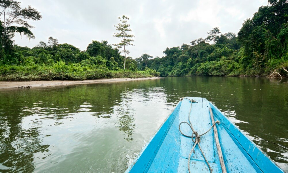 Sarawak Tour: boat on river nature