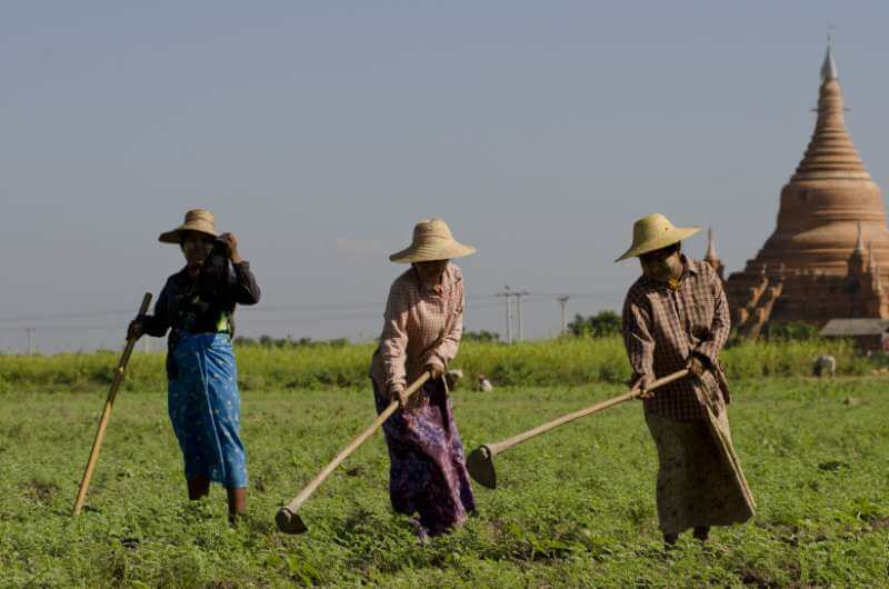 Myanmar Shan State Tour: local farmers