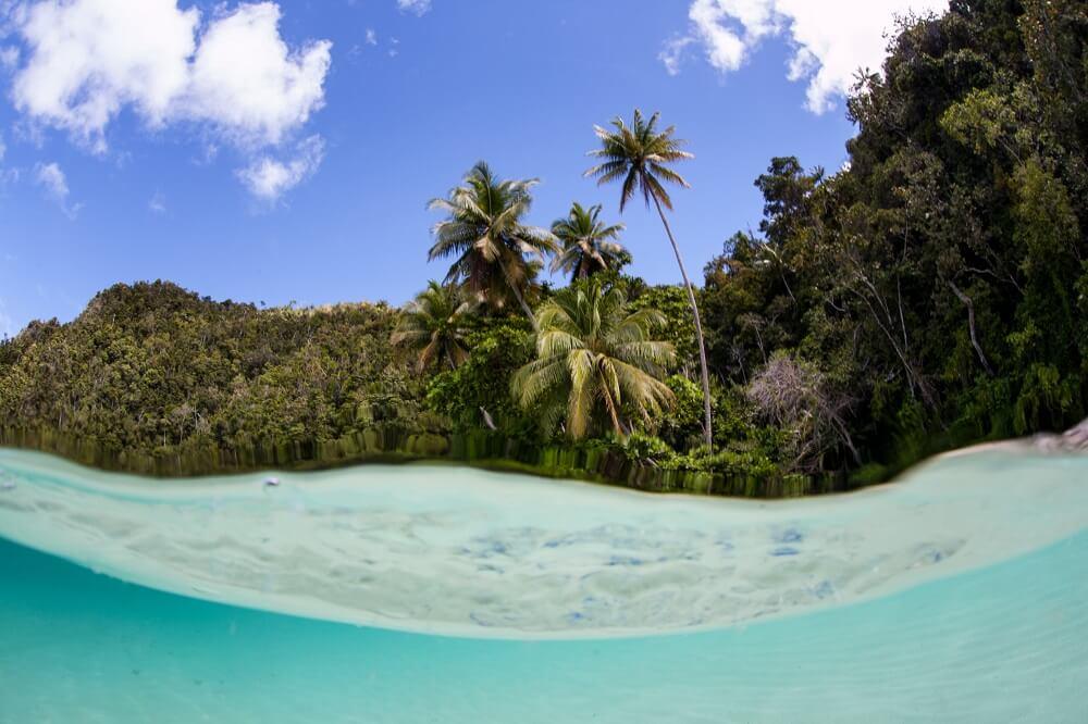 raja-ampat-tour-paradise