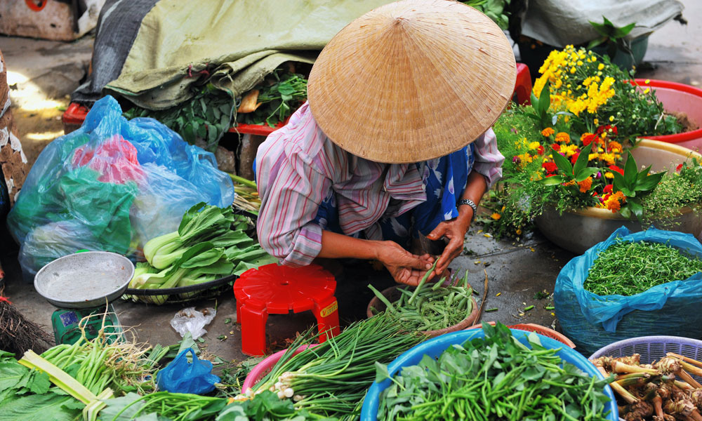 Saigon to Hanoi tour: local Vietnamese lady selling vegetables at local market