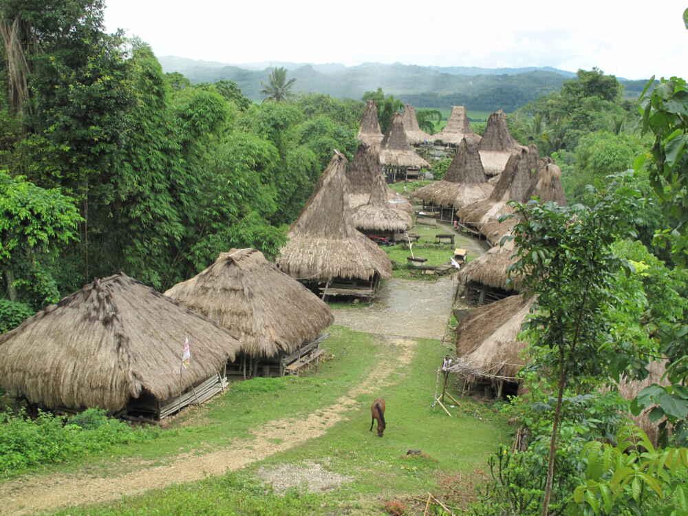 West Sumba Praiijing village near Waikabubak 2_0
