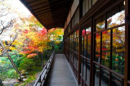 Kyushu and Shikoku Tour: Kyoto