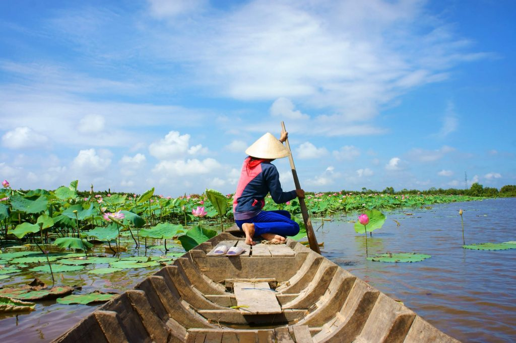 Vietnam and Cambodia family tour: local Vietnamese paddling wooden boat along lotus farm