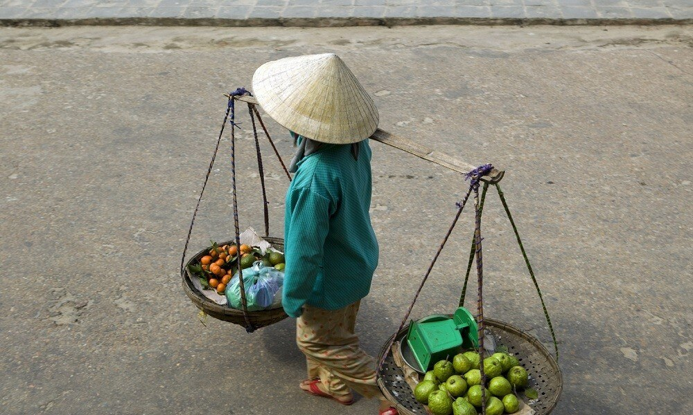 Halong Bay tour: vietnamese woman vendor sells guava