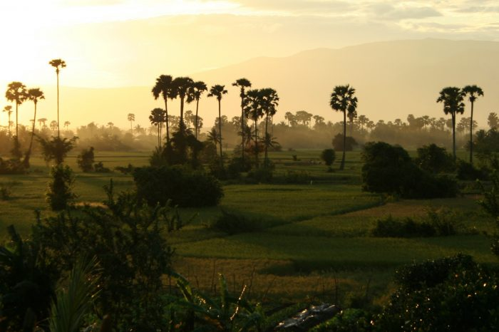 IMMERSED IN RURAL LIFE: A CAMBODIA HOMESTAY TOUR
