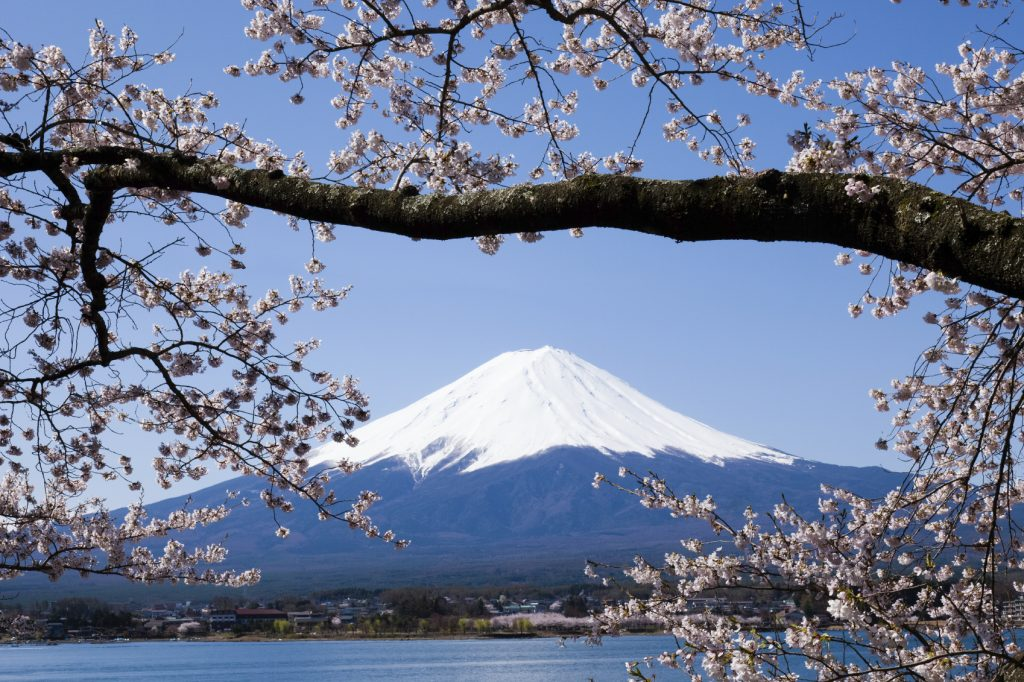 Top luxury holiday in Asia for honeymooners: Japan - view of mount fuji with sakura on foreground