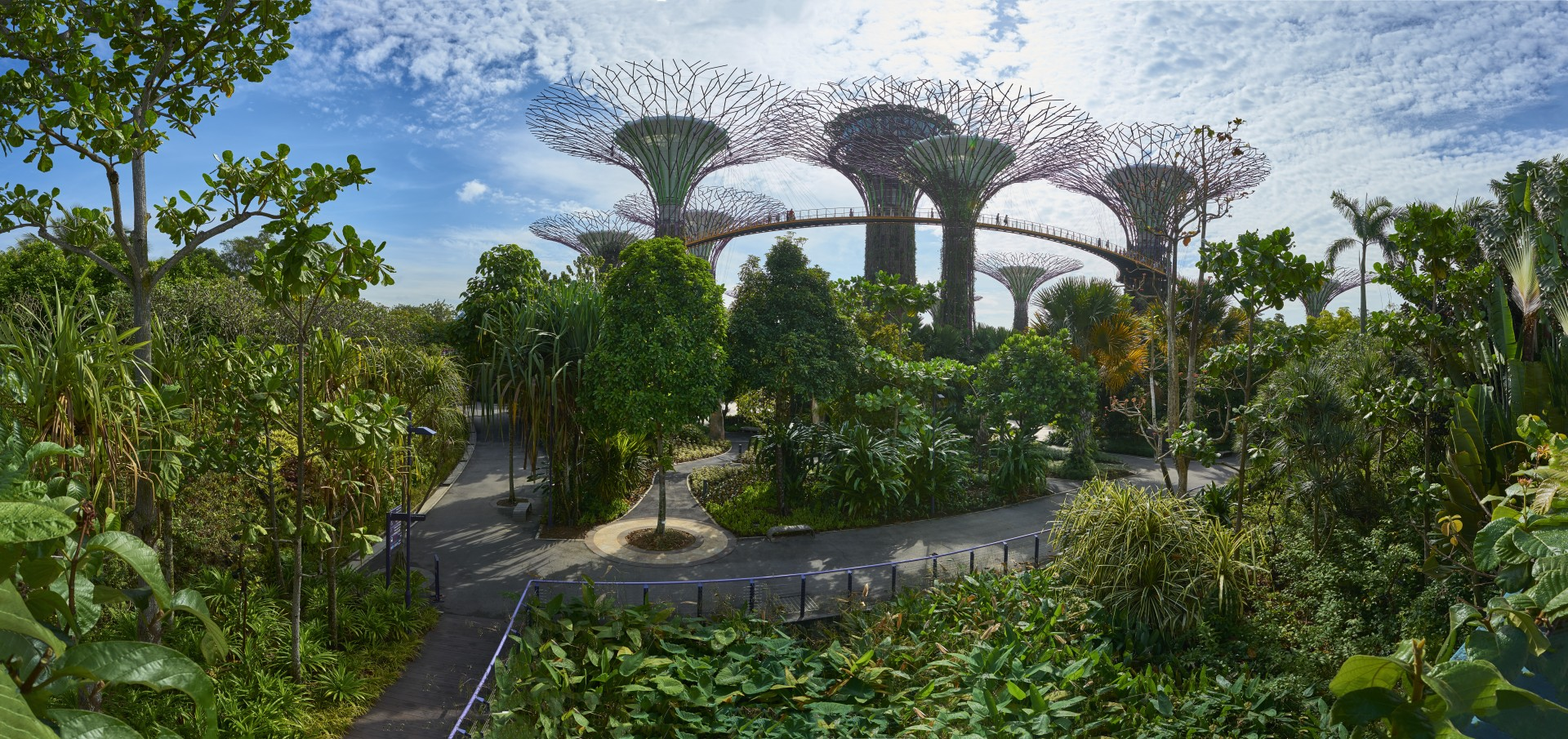 Best of Singapore - Pano gardens by the bay