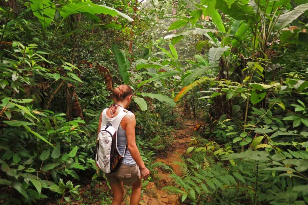 Perhentian Islands, Malaysia: hiking in jungle on Perhentian Besar