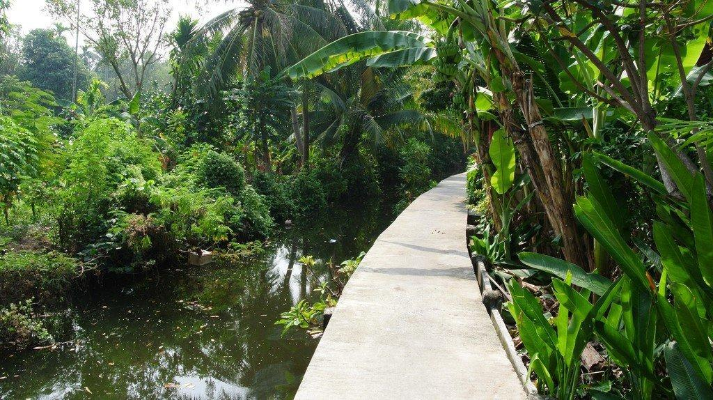 family holiday in Thailand: Bang Krachao
