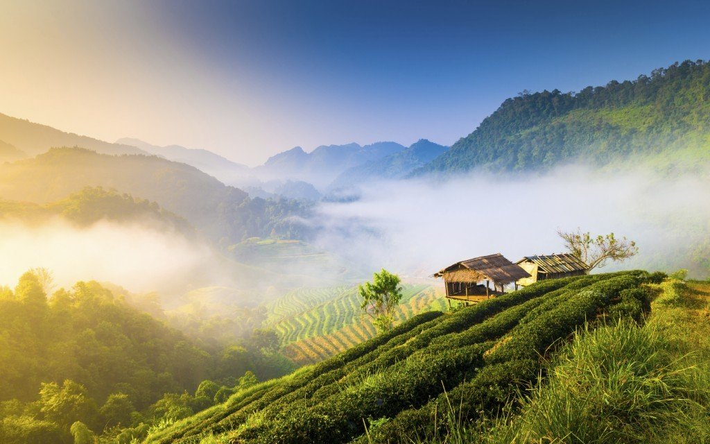 family holiday in Thailand: Chiangrai beautiful sunshine in the morning mountain