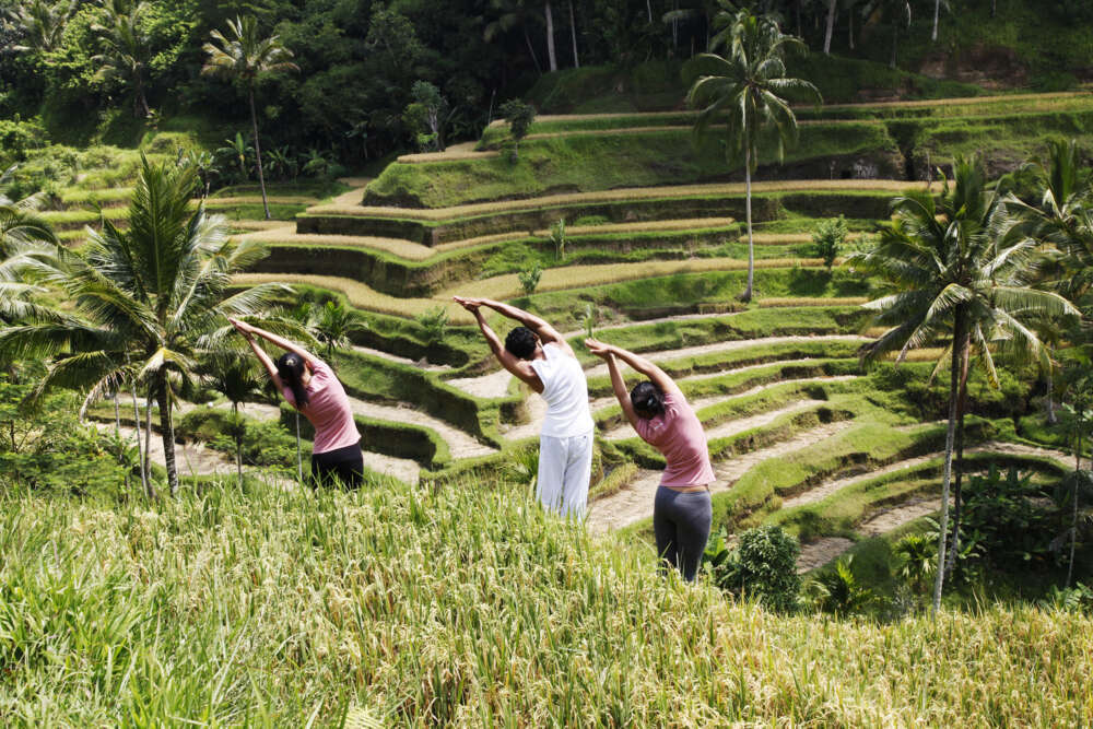three people making yoga at a rice filed in Bali, Indonesia