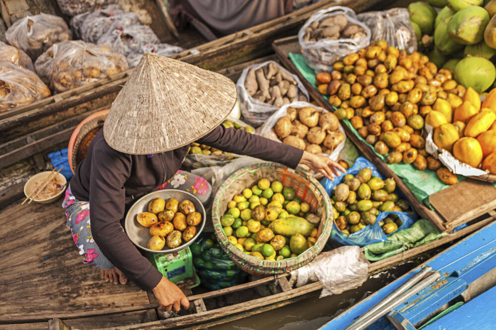 mekong delta cycling tour: floating market