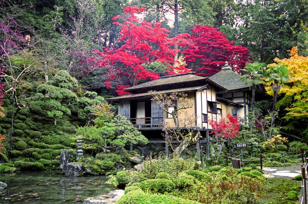 Honshu garden in Kyoto, Japan