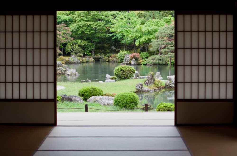 Japanesse moss garden
