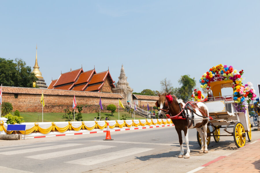 horse taxi in lampang, north thailand