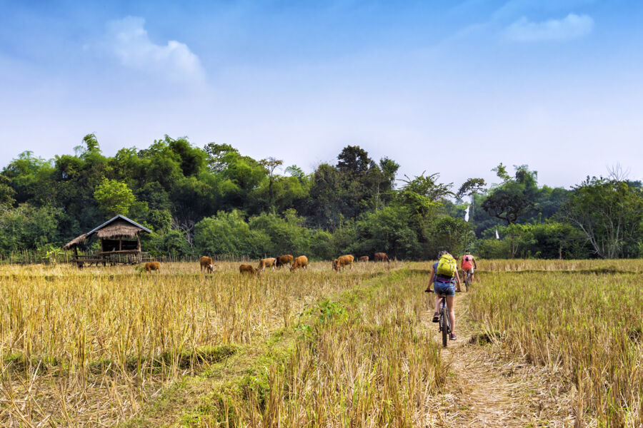 adventure holidays in Asia: travelers cycling in Vang Vieng countryside in Laos